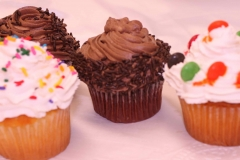 zCupcake Assortment