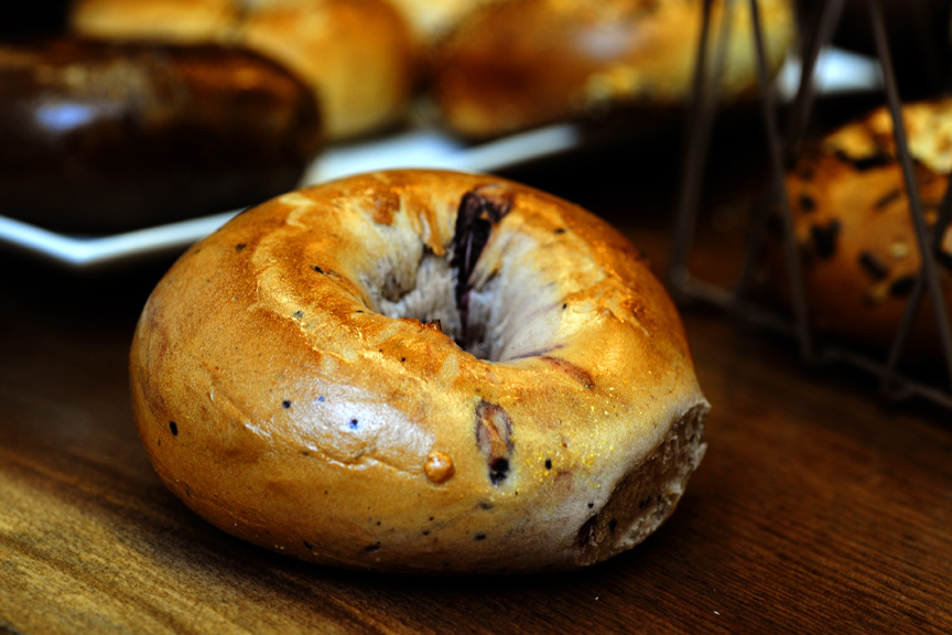 Davidovich Blueberry Bagel